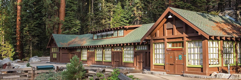 Giant Sequoias Museum Sequoia National Park