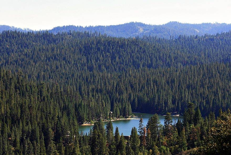Explore SSF Activities Hume Lake