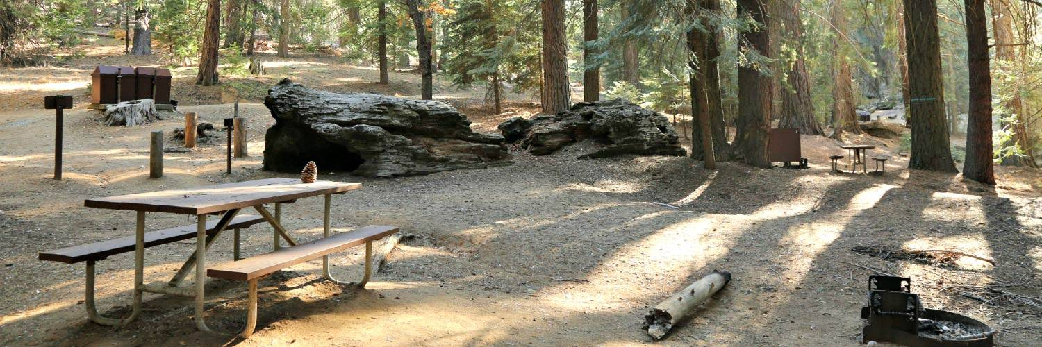 Sequoia National Park Camping | Sequoia & Kings Canyon NPS