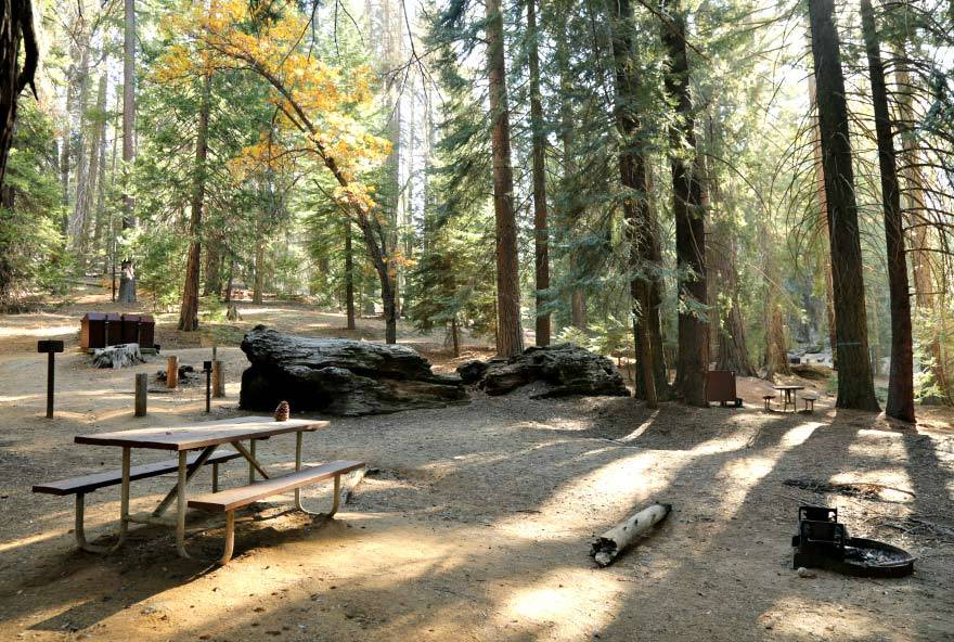 plan your trip sequoia kings canyon national parks