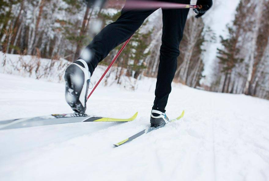Cross-country skiing through a wooded park