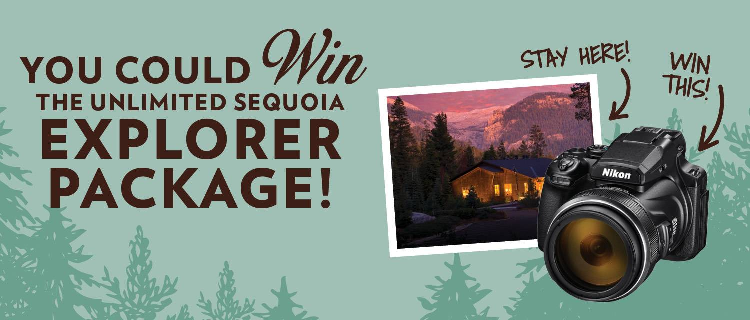 Unlimited Sequoia contest graphic featuring images of a stay at Wuksachi Lodge in Sequoia National Park and a Nikon camera